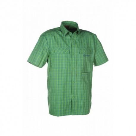 BEAVER Zelená