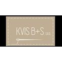 KVIS B+S